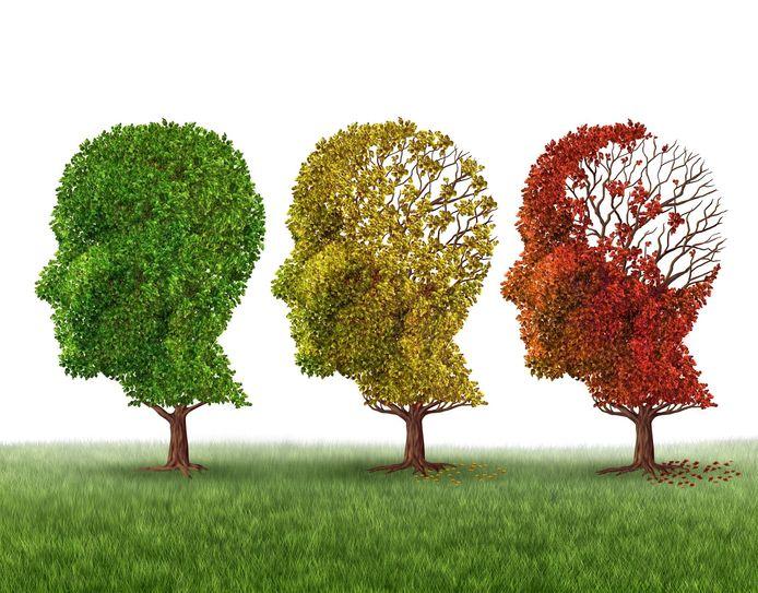 Dementie tast de hersens aan