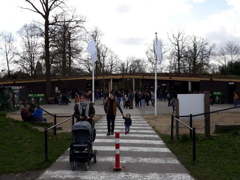 Bezoekers Planckendael keren huiswaarts.