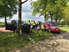 Automobilist knalt tegen boom in Oirschot