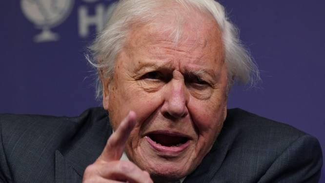 """David Attenborough doet oproep aan wereldleiders in aanloop klimaattop Glasgow: """"Als we nu niet handelen zijn we te laat"""""""