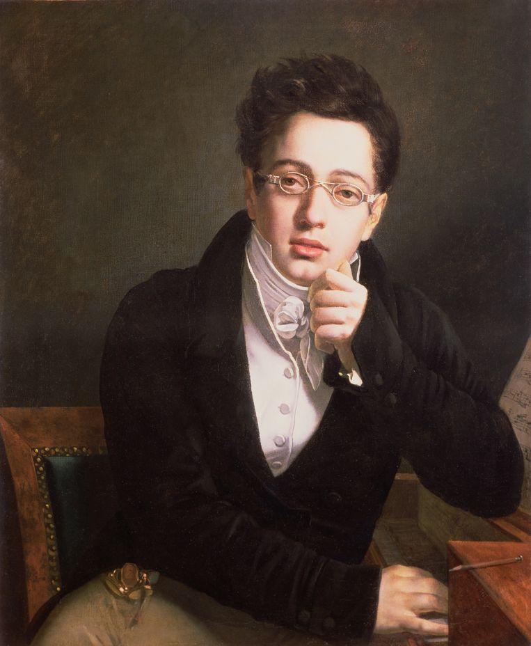 Portret van Franz Schubert (1797-1828), 17 jarige leeftijd, c.1814  Beeld Getty Images