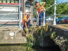 Delftse grachten grondig schoongemaakt voor Varend Corso