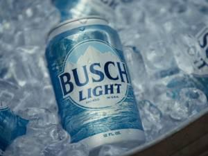 Des bières à vie pour le premier qui trouvera un bar caché dans une forêt