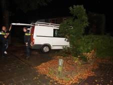 Automobilisten tegen lantaarnpaal en in heg in Haarsteeg en Waalwijk, moeten allebei blazen