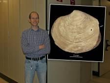 Deze Veluwse Amerikaan deed dankzij piepkleine gaatjes grote ontdekking: 'Echt fascinerend'