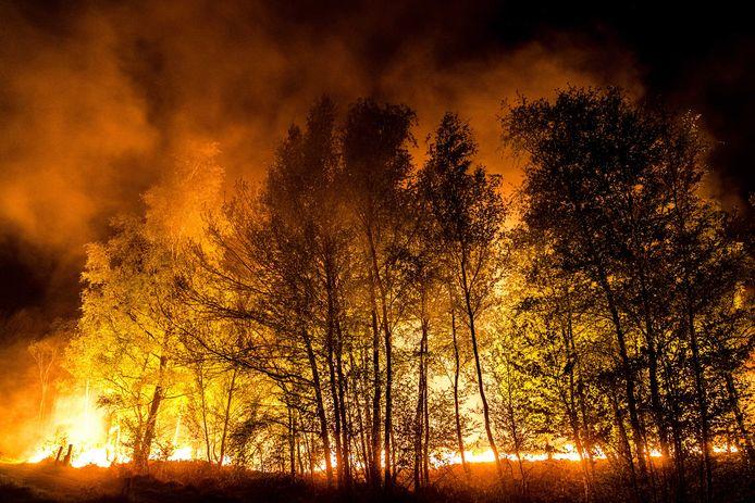 De grote natuurbrand in de Deurnsche Peel van eerder deze week.