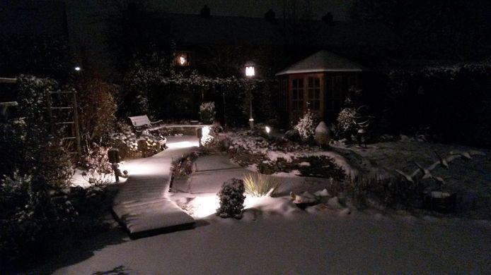De achtertuin van Ellen Koorevaar.