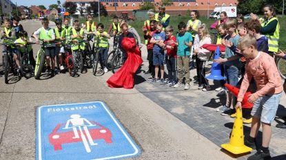 Politie gaat snelheidscontroles houden in fietsstraten