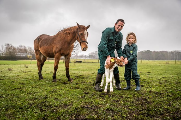 Paul Schots samen met zijn dochter met een pasgeboren kalfje en paard.
