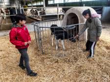Met Petje Af de boer op: 'Het doet me een beetje denken aan vroeger in Syrië'
