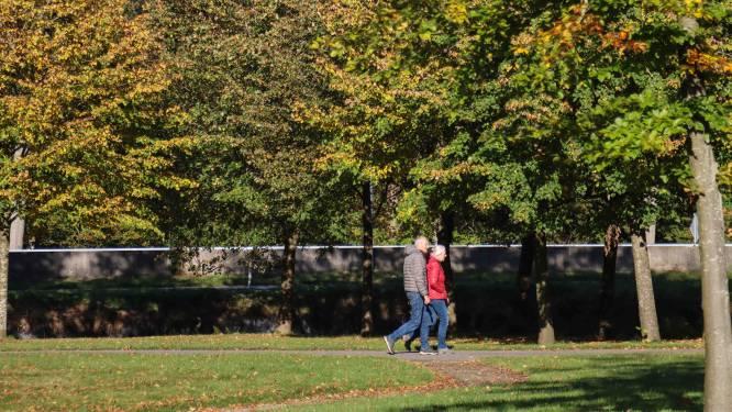 'Dat we nu nog groene blaadjes aan bomen zien, noem ik klimaatverandering in de achtertuin'