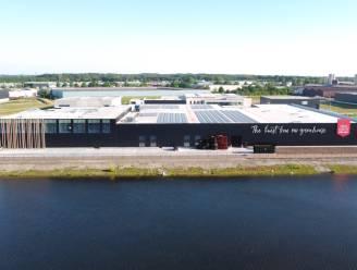 Den Berk Délice breidt nog verder uit: overname van teler in Merksplas en gloednieuwe sorteercentrale in Hoogstraten