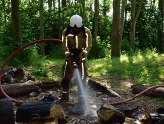 Brandweer blust brandje in bos aan speelplein