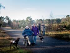 Waar rond Apeldoorn kan Wilmar nog lekker de natuur in met haar hond Ike?