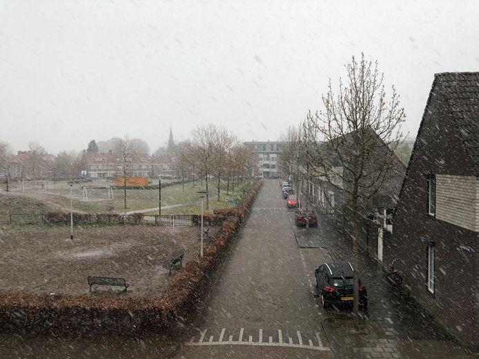 Sneeuw in Tilburg.