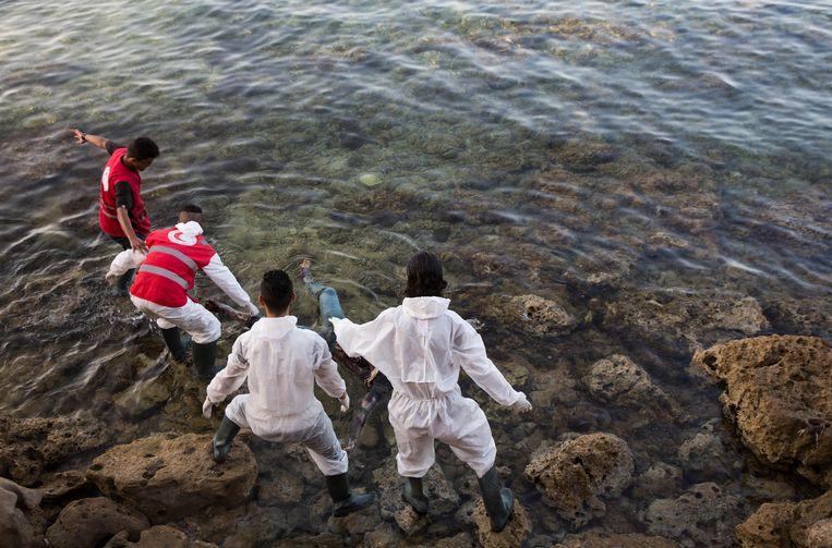 Lichamen van verdronken migranten worden uit het water gehaald aan de kust van Tajoura.  Beeld EPA