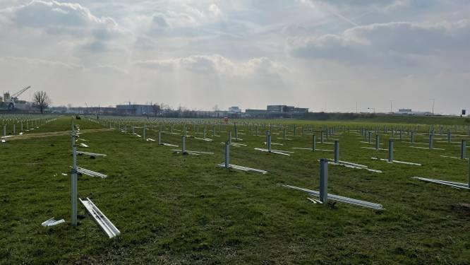 Zolang er geen 900 miljoen wordt betaald, gijzelt Egypte 23.000 zonnepanelen die in Amersfoort horen te liggen