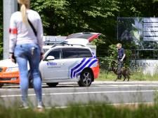 Ontsnapte leeuwin in Belgische dierentuin doodgeschoten