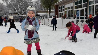 Eerste echte sneeuw: dat is winterpret én ellende