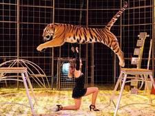 Circus Renz vier dagen in Hardenberg