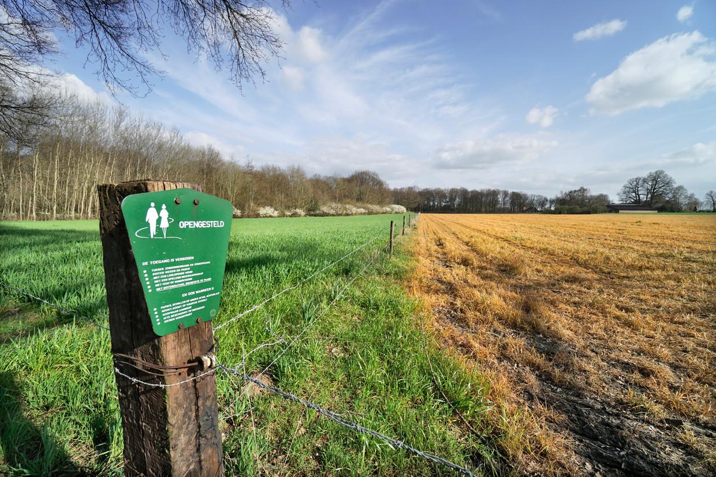 Een landbouwperceel is behandeld met Roundup en kleurt geel.