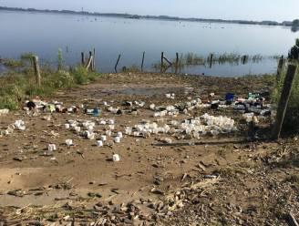 """Volgend weekend grootschalige opruimactie gepland"": minister Demir wil berg afval langs Maas snel weg"
