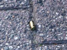 Kogelhulzen aangetroffen op straat in vakantiepark bij Oostvoorne