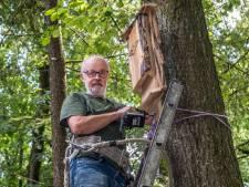 Henk Klaassen zet een bescheiden wapen in tegen de eikenprocessierups: de vleermuizenkast