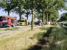 Automobilist (44) overleden bij ongeluk langs N277 bij Wilbertoord