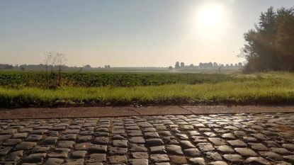 Vergeet Parijs- Roubaix: eerste 'Wase Keikop' stuurt wielertoeristen over mooiste kasseistroken in eigen regio