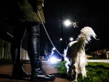 Blijven de hondenbezitters een beetje nonchalant naar binnen loeren bij iedereen die door de avondklok is opgesloten?