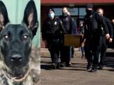 Amerikaanse agenten nemen afscheid van politiehond Luna met rouwstoet
