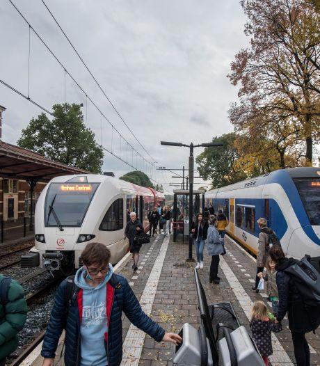 Weg met overstappen: de regio wil sneller met de trein van Tiel naar Geldermalsen