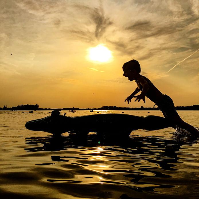 Wie zwemt, kan weleens een dier tegenkomen. Benjamin jaagt op krokodillen in het Veluwemeer.