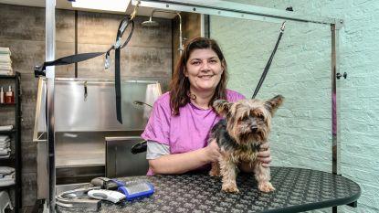 Nieuw hondentrimsalon in hartje stad: Leen De Wilde zegt fabrieksjob vaarwel om hondjes te verwennen