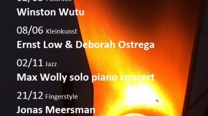 Freinetschool De Pit organiseert Kunstlicht in concert