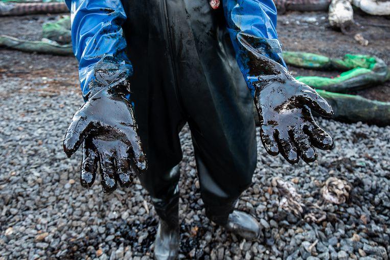 Haast is geboden om verdere aantasting van het kwetsbare ecosysteem te voorkomen. Beeld EPA