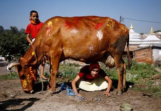 fotoreeks over Hindoes vieren het Diwali-festival