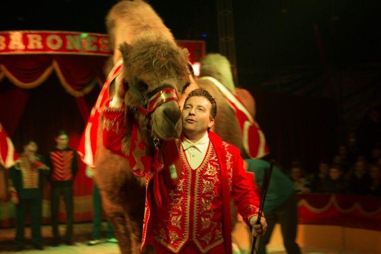Het circus zorgt voor een spetterende show.
