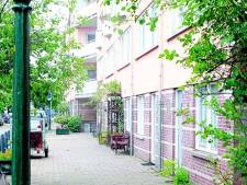 Haagse Trees was spil in cocaïnenetwerk maffia
