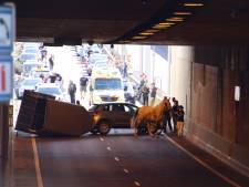 Trailer kantelt op N57 Middelburg: paard en bestuurder met de schrik vrij