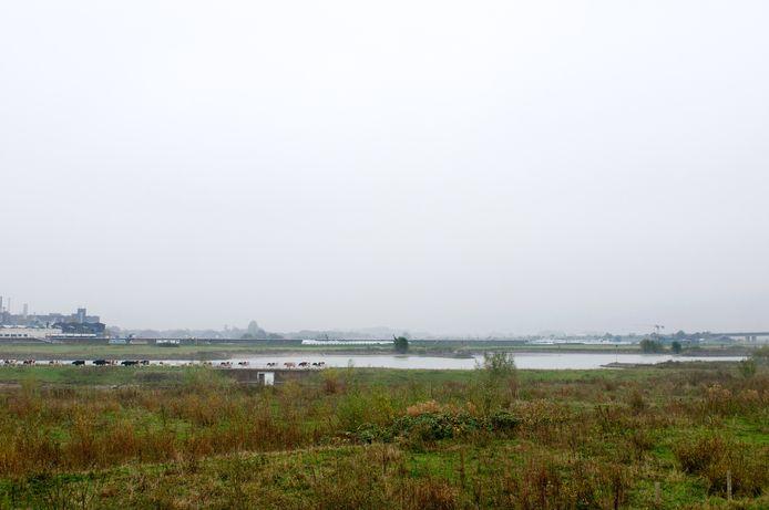 Het Rijngebied in Arnhem-Noord. Skyline Kleefse Waard met geheel rechts stukje Sacharovbrug.