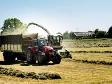 Zelfs in tijden van pandemie groeit aantal banen in Lochem: 'We moesten opeens tuintjes aanleggen'