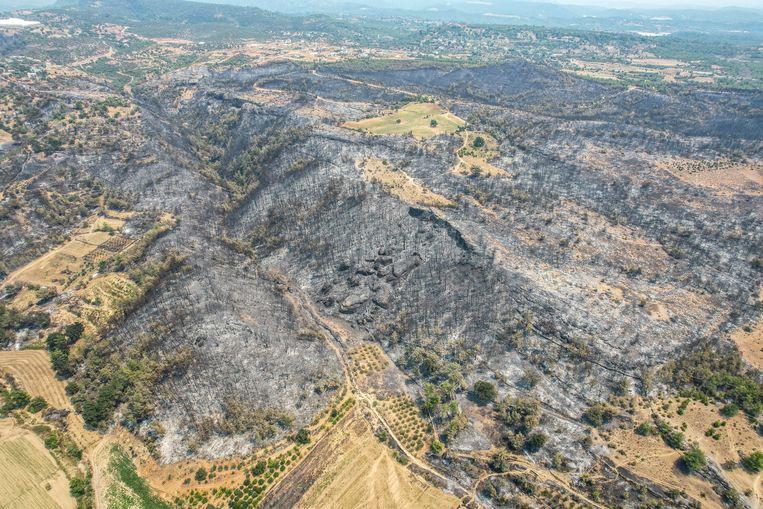 Grote lappen groen zijn opgebrand in Turkije. Beeld AP