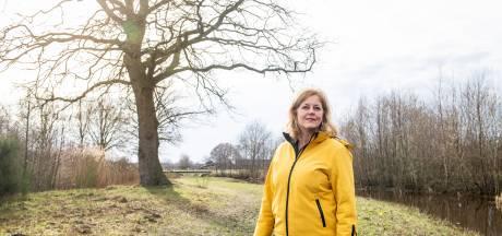 Emoties lopen hoog op in het noorden van Twente: 'Help, ons coulisselandschap is in gevaar'