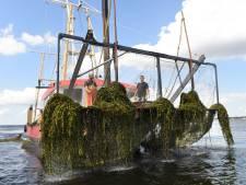 Het Eemmeer schoon en bevaarbaar houden kost zo'n 67 miljoen euro: gaat deze oplossing daarbij helpen?