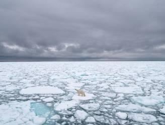 """Arctische expeditie: """"Kantelpunt onomkeerbare opwarming aarde wellicht al voorbij"""""""