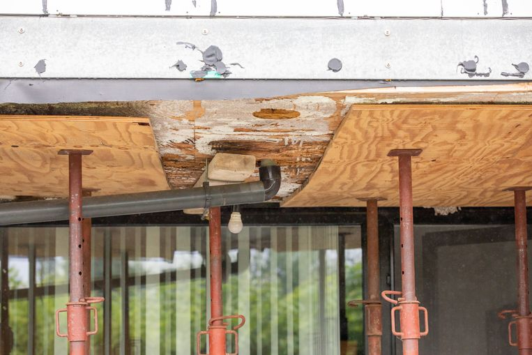 De houtstructuur van het gebouw is rot. Beeld Mine Dalemans