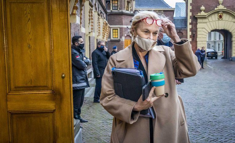 Sigrid Kaag op het Binnenhof.  Beeld ANP