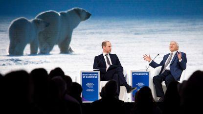 """Prins William interviewt tv-legende David Attenborough: """"We kunnen volledige ecosystemen uitroeien zonder het zelfs maar te merken"""""""
